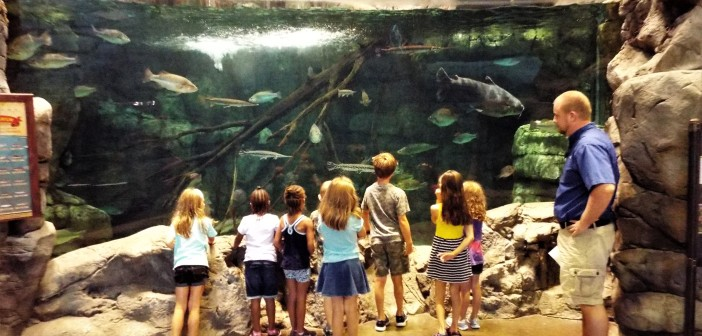 Wildlife & Conservation @ Bass Pro Shop